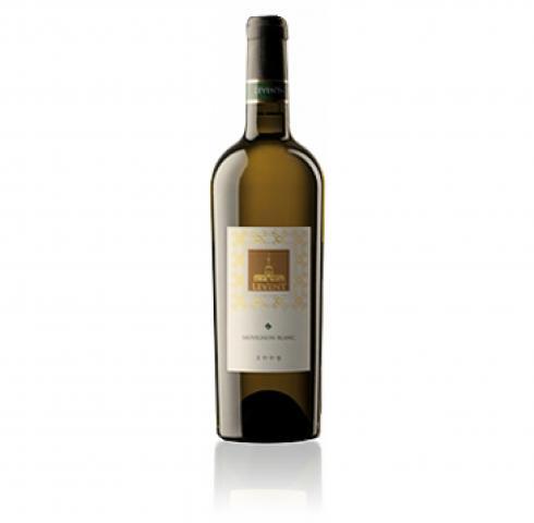 вино Левент 750мл Совиньон Блан