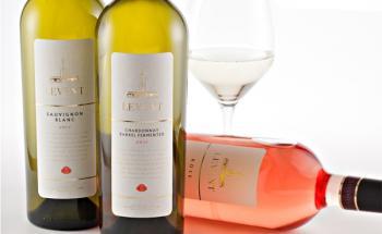 винарска къща Русе - топ цени - Онлайн магазин за алкохол Ноков и Син