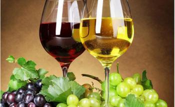 ПЛОДОВИ ВИНА - топ цени - Онлайн магазин за алкохол Ноков и Син